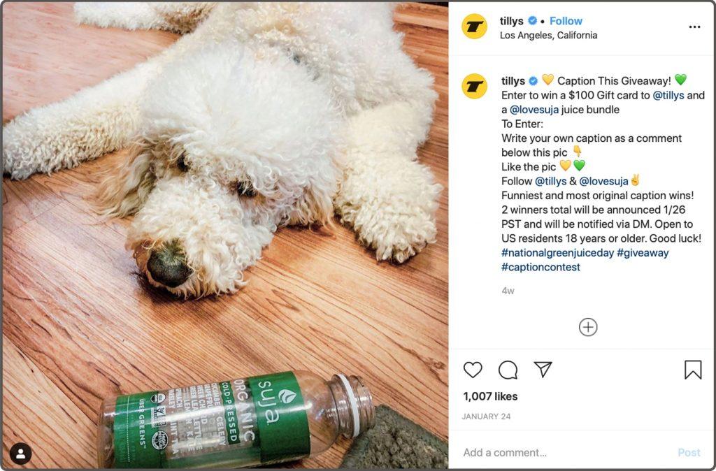 Dog laying on floor-Caption contest